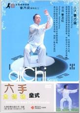 六手太极功坐式(DVD)